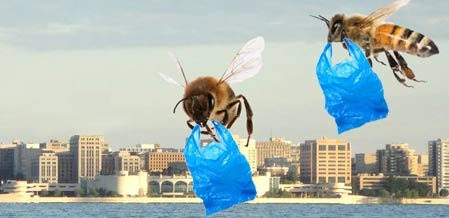 bees plastic bags 2